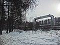 Irkutsk. Akademgorodok. February 2013 - panoramio (122).jpg