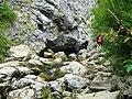 Izbucul Ponorului - panoramio.jpg