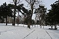 Jardins Trocadéro neige 11.jpg