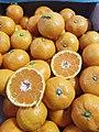Jeju Citrus.jpg