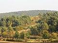 """Jesień na """"Murawach"""" - panoramio.jpg"""