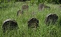 Jewish cemetery Sokolow Malopolski IMGP4650.jpg