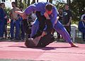 Jiu-jitsu tournament with local Australians, U.S. Marine 150725-M-BX631-117.jpg