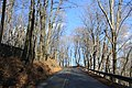 Johnstown late November - panoramio (18).jpg