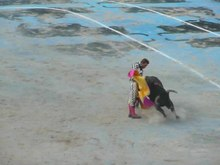 Datei:Juan Bautista corrida goyesque Feria du Riz Arles 2010.ogv