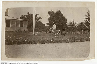 Samuel James Mitchell - 'Corner of Residency, Darwin 1910'. Judge Samuel James Mitchell near the flagpole, with jabiru and cat on the lawn