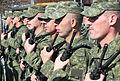 KAF Operational Support Brigade.jpg
