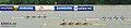 KOCIS Korea Chungju World Rowing mcst 21 (9662364888).jpg