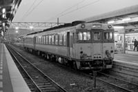 Kiha 65 and Kiha 58 at Takamatsu station.JPG