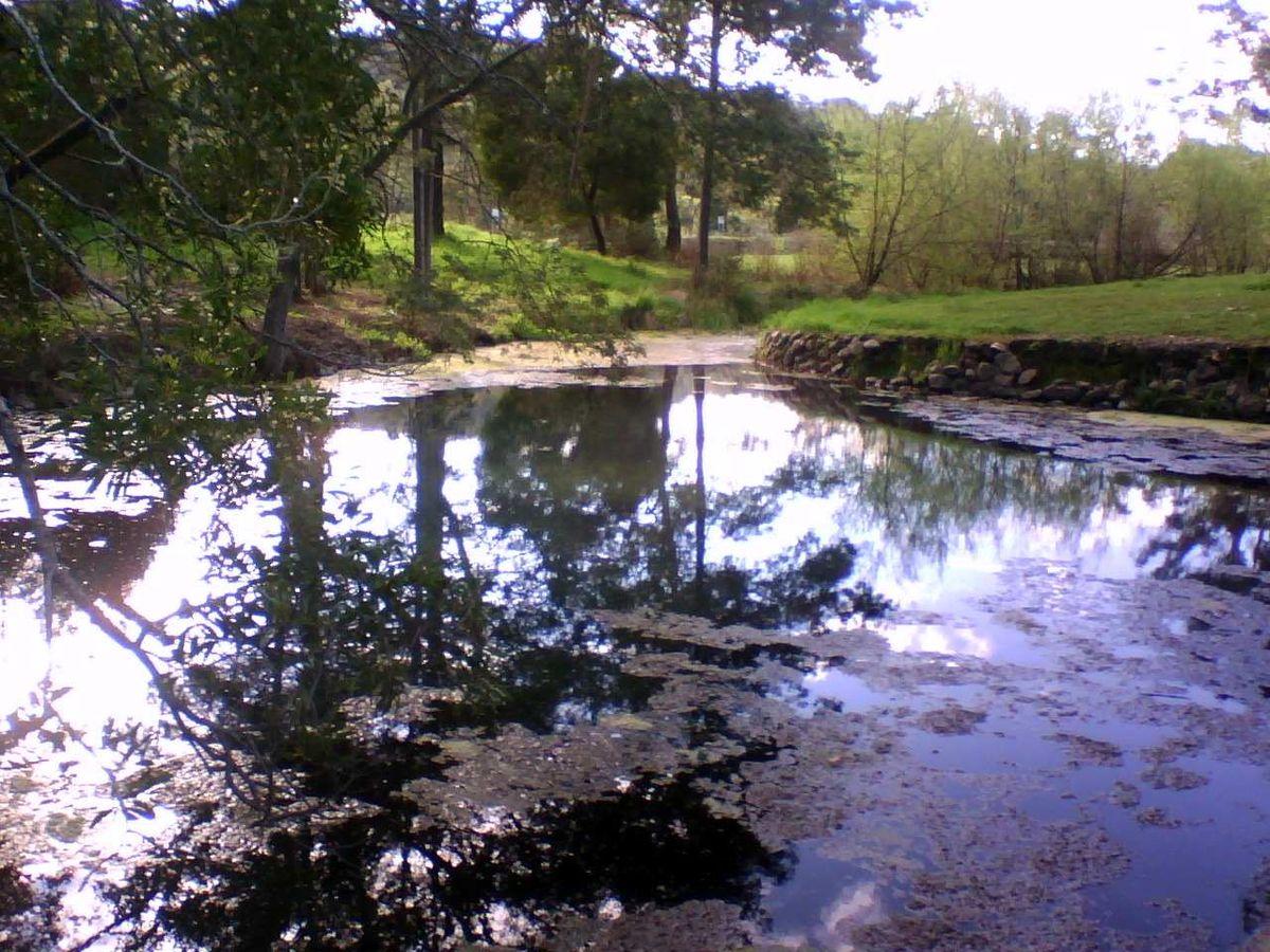 Kimberley Warm Springs Wikipedia