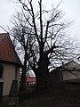 Kirche silstedt 2019-02-22 (10).jpg