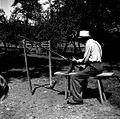 Klepanje kose, klepavnik in stajce, pri Gregorjevc, Bičje 1948.jpg
