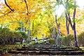 Kogen-ji, Precincts -1, (November 2012) - panoramio.jpg