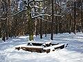 Koniec zimy w połowie marca - Wolica las - 02 - panoramio.jpg