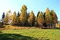 Krasnoobsk, Novosibirskaya oblast', Russia - panoramio (9).jpg