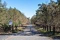 Lüdinghausen, Naturschutzgebiet Borkenberge -- 2020 -- 0245.jpg