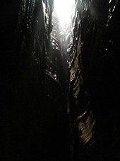 Louisville Slugger chauves-souris datant
