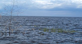 Lake Okeechobee - Lake Okeechobee, from Canal Point, Florida