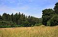 Landscape by Myšlín.jpg