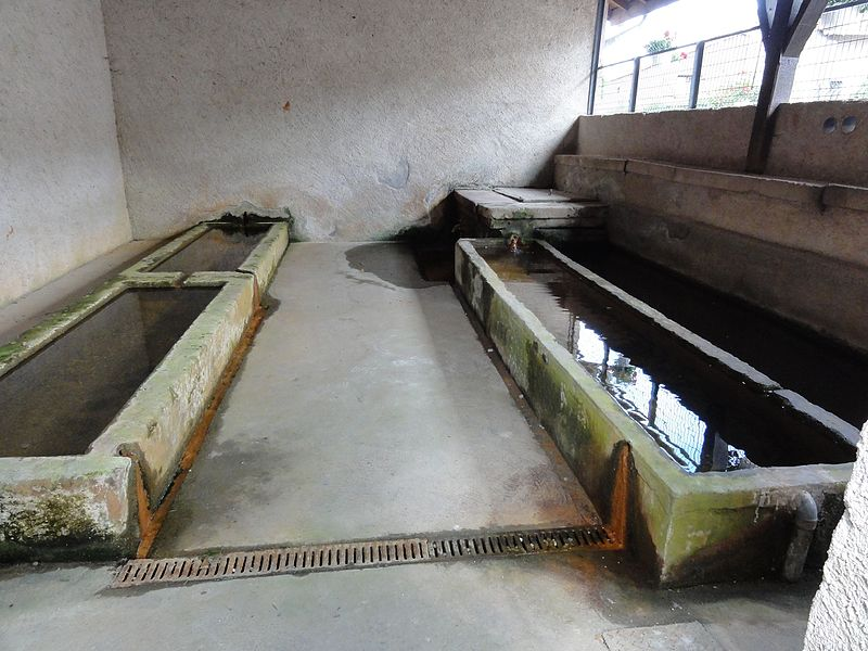Laneuveville-devant-Bayon (M-et-M) lavoir, intérieur