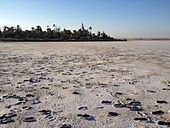Larnaca Salt Lake (8010196949).jpg