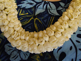 Lei (garland) - Fragrant lei of fresh pikake (Arabian jasmine)