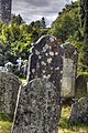 Lichen on gravestones (8061801340).jpg