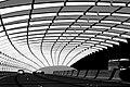 Linear Bridge (143835497).jpeg