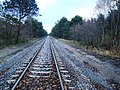 Linia kolejowa do Helu - panoramio.jpg