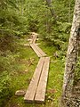 Lonesome Lake Trail - 2010.07.31 - panoramio.jpg