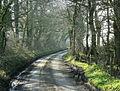 Long Lane, near Beans Land Farm - geograph.org.uk - 1237887.jpg