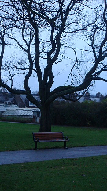 taken at a park in Aberdeen, Scotland