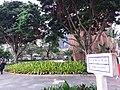 MC 澳門 Macau 澳門半島 Macao Peninsula 大堂區 Freguesia da Sé District tourism March 2019 SSG 22.jpg