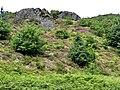Machynlleth - panoramio (5).jpg