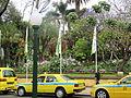 Madeira em Abril de 2011 IMG 1701 (5663734310).jpg