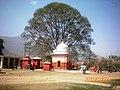 Mahadev temple, Vishnudevi - panoramio.jpg