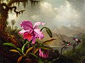 Martin Johnson Heade - Orchids and Hummingbirds (14994490788).jpg