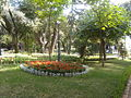 Martina Franca (TA) - villa comunale 3.JPG