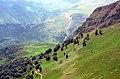 Masal - Kolour road - panoramio (2).jpg