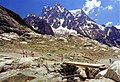 Massif et glaçier du Pelvoux. 3931 m.jpg