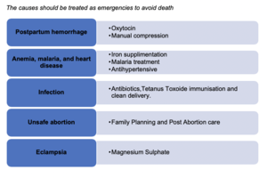 Maternal Deaths in India - Causes.png