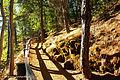 McArthur-Burney Falls Memorial State Park, California (22693443733).jpg