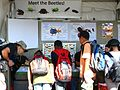 Meeting the Beetles at the UA Insect Collection booth - Flickr - treegrow.jpg