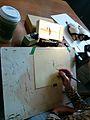 Megaloptera drawing 02.jpg