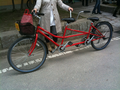 Meijo Park Bicycle - flickr 4469139858 bcc0b1c907 o.png
