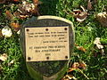Memorial plaque on village green - geograph.org.uk - 256142.jpg