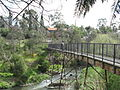 Merri Footbridge Merri Creek Melbourne.JPG