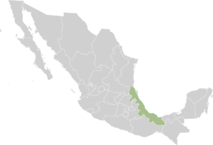 Веракрус на карте