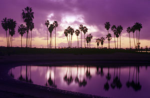 Mission Bay (San Diego) - Mission Bay sunset, San Diego, CA.