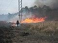 Mississippi Sandhill NWR Prescribed Fire (8453157669).jpg